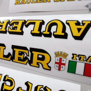 silk screen FREE SHIPPING RAULER Special decal sticker bicycle