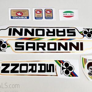 Sarroni decal set BICALS