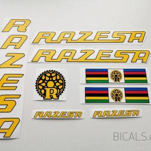 Razesa V1 decal set BICALS